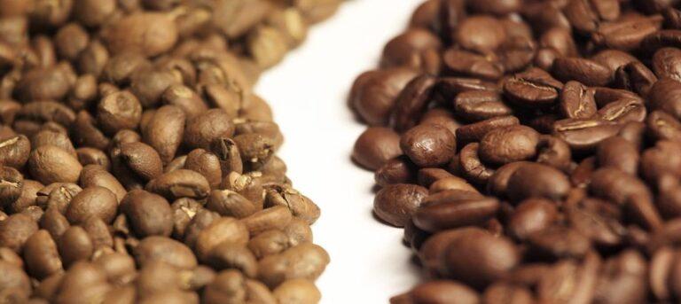 saka differenze caffè arabica robusta