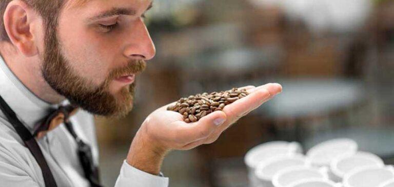 26-27-28 Maggio 2021 - Corso di Sommelier dell'Espresso livello I - II - III AICAF saka caffè caffè tafuri